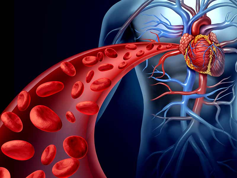 Hipertensiunea arteriala pe intelesul tuturor