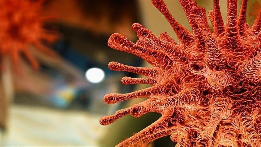 Screening pentru depistarea infectării cu noul Coronavirus